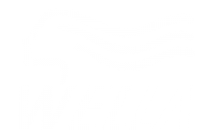 wella logo for slider
