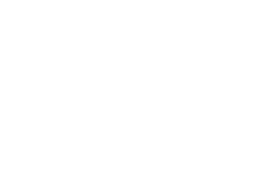 HD BROWS LOGO FOR SLIDER